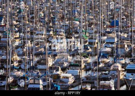Marina - Stock Image