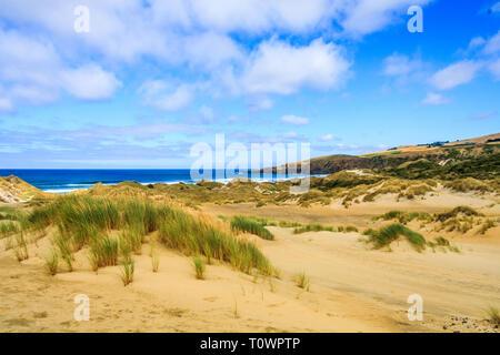 The sand dunes at Sandfly Bay, Otago Peninsular, South Island, New Zealand - Stock Image