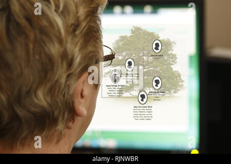 Woman researching her family tree online - Stock Image