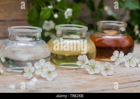 Tinktur aus Weißdornblüten, Weißdorn-Blüten, Weißdornblüten-Tinktur, 3 unterschiedlich alte Ansätze im Vergleich, Weißdorn-Blütentinktur, Weißdorn, We - Stock Image