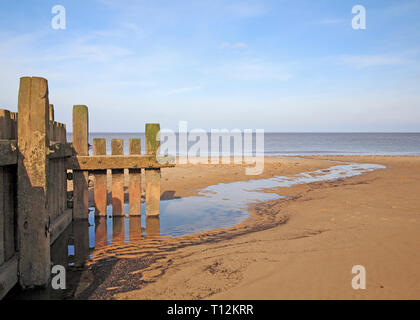 End of a wooden breakwater with drainage to the sea at low tide on the North Norfolk coast at Bacton-on-Sea, Norfolk, England, United Kingdom, Europe. - Stock Image