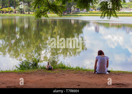 Back view of teenage girl, lonely young woman, sitting on lake shore, with duck on the banks, Lago (Lake) das Garças, Parque (Park) Ibirapuera, Brazil - Stock Image