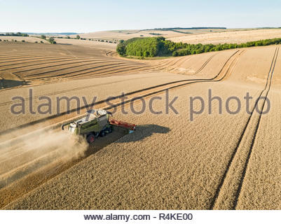 Harvest aerial landscape of combine harvester and summer wheat field farm crop - Stock Image