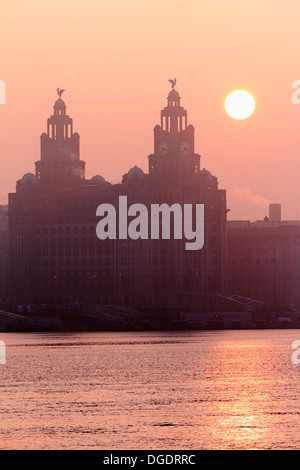 Liver buildings Liverpool sunrise - Stock Image