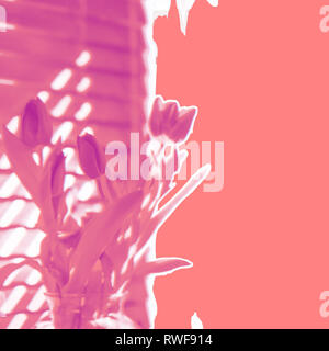 Contemporary floral abstract spring tulips in shades of pink including living coral, the hot trend Pantone Color of the Year for 2019 - Stock Image