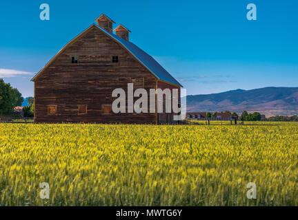 Rustic Barn - Stock Image