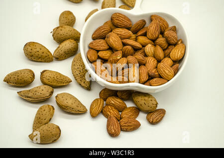 White porcelain bowl with peeled edible almond among of untreated almond in rough shell on white background - Stock Image