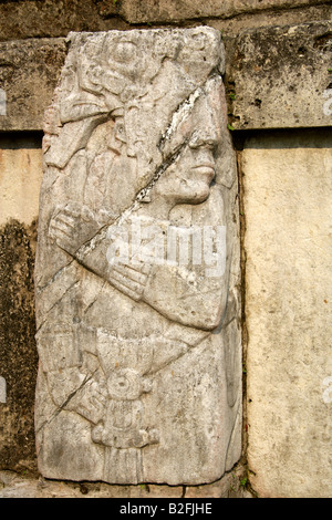 Stone Relief Carving on the Walls of the Palace, Palenque Archeological Site, Chiapas State, Mexico - Stock Image