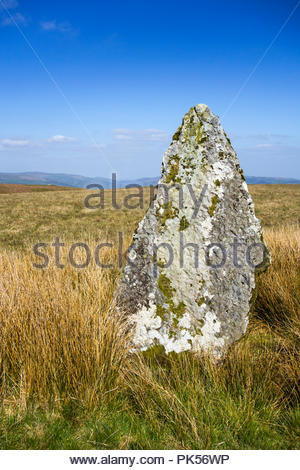 Carreg Waun Llech, a Bronze Age standing stone, on upland moorland at Mynydd Llangynidr, Powys, Wales, UK – Brecon Beacons National Park. - Stock Image