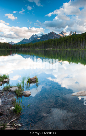 Mountain panorama from Herbert Lake at the icefield parkway in Banff National Park, Alberta, Canada - Stock Image