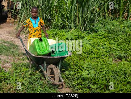 African boy carrying water in a wheelbarrow, Tonkpi Region, Man, Ivory Coast - Stock Image