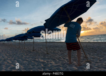 Hotel beach attendant sets up sun umbrella as sun rises of Atlantic Ocean on Miami Beach, Florida - Stock Image