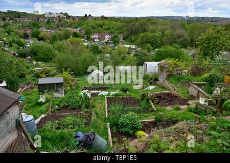 Overlooking Bristol Ashley Vale Allotments - Stock Image