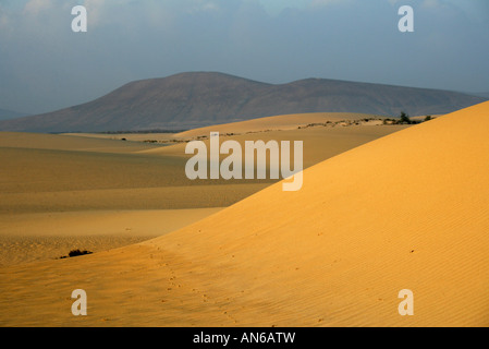 Sunset Sand Dunes, Corralejo National Park, Fuerteventura, Canary Islands - Stock Image