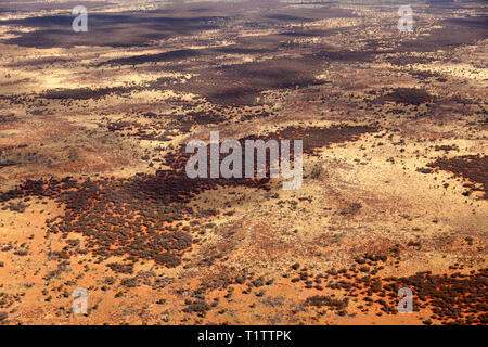 Aerial view of the native bush in Uluṟu-Kata Tjuṯa National Park, Northern Territory, Australia - Stock Image