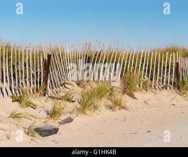 Dunes, dune grasses fence sand clear blue sky, Sandy Neck Beach, Barnstable, Cape Cod, Massachusetts, nostalgic - Stock Image