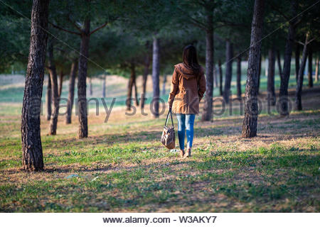 Beautiful woman standing on park during sunset back view - Stock Image