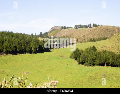 Scenic view of fields covering volcanos in The Azores - Stock Image