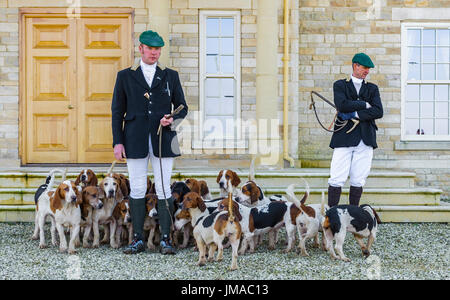 The East Lincs (Lincolnshire) Basset Hounds - Meeting at Temple Bruer in Lincolnshire - Stock Image