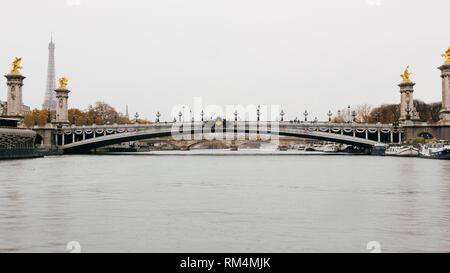 Paris (France) - Alexandre III Bridge on the Seine - Stock Image