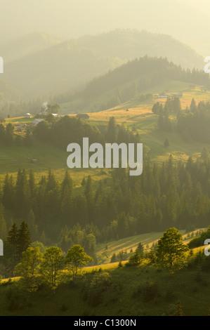 landscape near dzembronya area of ukraine - Stock Image