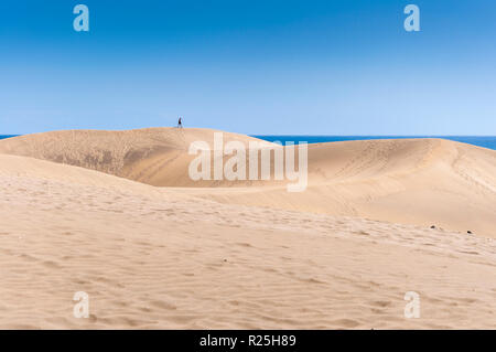Coastal dunes in Maspalomas beach, in Maspalomas, Gran Canaria Island, Canary Islands, Spain, on February 19, 2017 - Stock Image