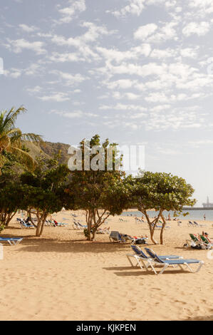 Playa de las Teresitas tenerife canary islands isles canaries golden sand sandy beach beaches near santa cruz - Stock Image