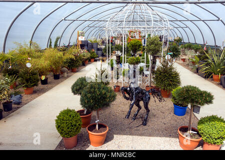 A garden centre display of large pot plants and  ornaments for sale in a garden centre - Stock Image