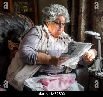 Grey haired, 80 year old woman sitting in leather chair at home in dappled sunlight, reading knitting instructions - Stock Image