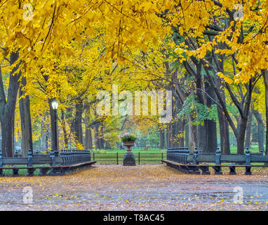 At the Mall, Central Park in the early morning in late autumn - Stock Image