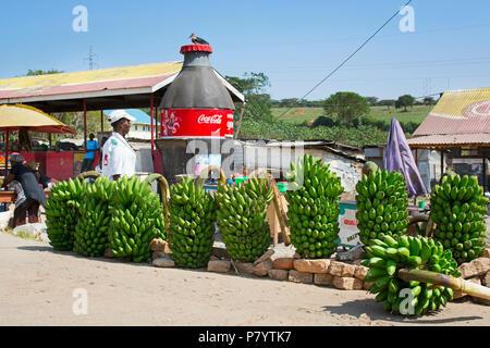 Matooke, Green Bananas, Plantains National Food of Uganda, Roadside Market - Stock Image