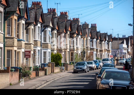 Row of houses in Oxford - Stock Image