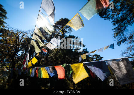 Masses of colourful prayer flags at Dochu La, a 3140-m pass on the road between Thimphu and Punakha in western Bhutan - Stock Image