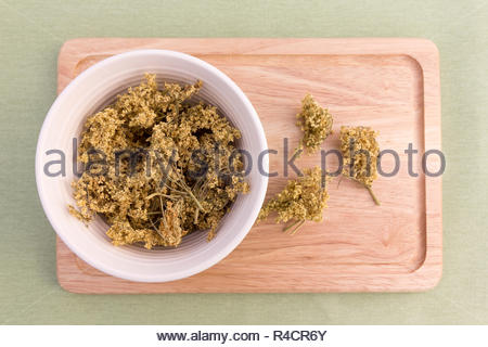 Dried elder flowers in a bowl - Stock Image