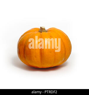 Pumpkin on a white background - Stock Image