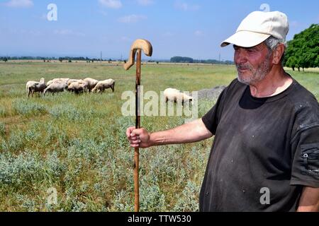 Shepherd -Valley of the Thracian Kings in Kazanlak- Province of Stara Zagora.BULGARIA - Stock Image