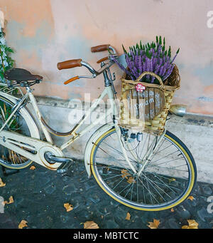 A bike on coblestone sidewalk with basket of Lavender flowers and dream sign - Stock Image