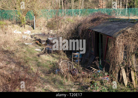 Derelict shed on disused allotments, Sowerby Bridge, West Yorkshire - Stock Image