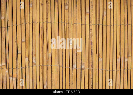 Vintage Wooden bamboo Background. Thin cane bamboo tied together with wire background - Stock Image