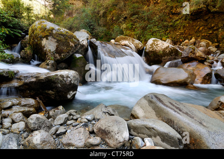 mountain stream in Nepal - Stock Image