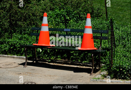 Cones on a bench - Stock Image