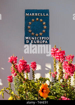 Marbella wall sign floral 'Municipio d Europa' with EU stars, with   'Stock' Matthiola incana flowers surrounding a Hibiscus in foreground Marbella - Stock Image