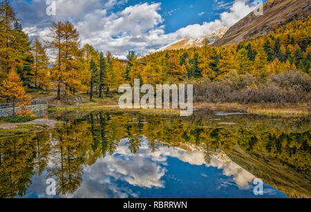 Dolomites Mountains, autumn landscape in the The Martello valley in South Tyrol in the Stelvio National Park, Alps, northern Italy, Europe - Stock Image