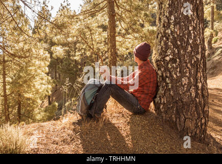 Shinrin Yoku, (Forest Bathing). Slim, mature male hiker relaxing in early morning sunshine in pine forest. - Stock Image