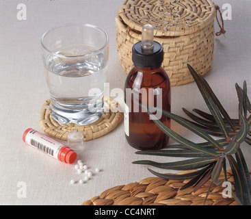 Still Life: Natural Products. Catapuzia (Euphorbia Lathyris). Use - Stock Image