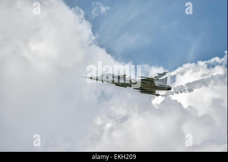 Swedish Air Force SAAB JAS 39 Gripen RIAT 2014 - Stock Image