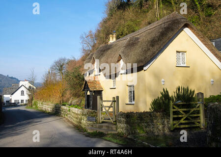 17th century Old Maids Cottage with a traditional thatched roof and view down lane to Old Post Office in pretty village of Lee North Devon England UK - Stock Image