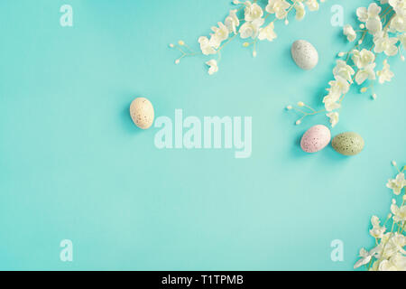 Pastel Easter eggs and white flower blossoms over a teal blue background with room for copy space. Image shot from top view. - Stock Image