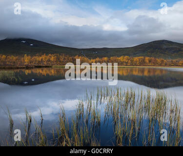 Small mountain lake in autumn, near Tärnasjön, Kungsleden trail, Lapland, Sweden - Stock Image
