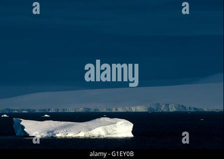 Floating ice Antarctic Sound at dawn Antarctic Peninsula Antarctica - Stock Image